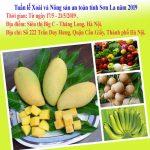 Sơn La: Tuần lễ xoài và nông sản an toàn tại Hà Nội